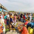 【記事配信】セネガルの漁港から見えてくるもの